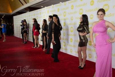 XBIZ Awards 2014-2106_800x533