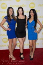 XBIZ Awards 2014-2413_400x600